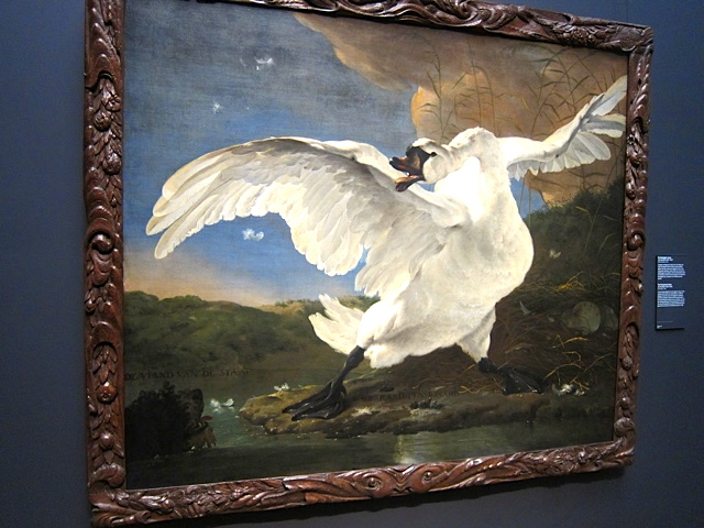 The Threatened Swan, painted by Jan Asselijn in the 1640s