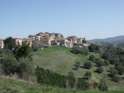CinigianoPanorama