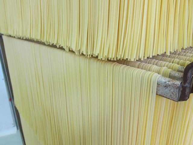Dried pasta in production in Abruzzo