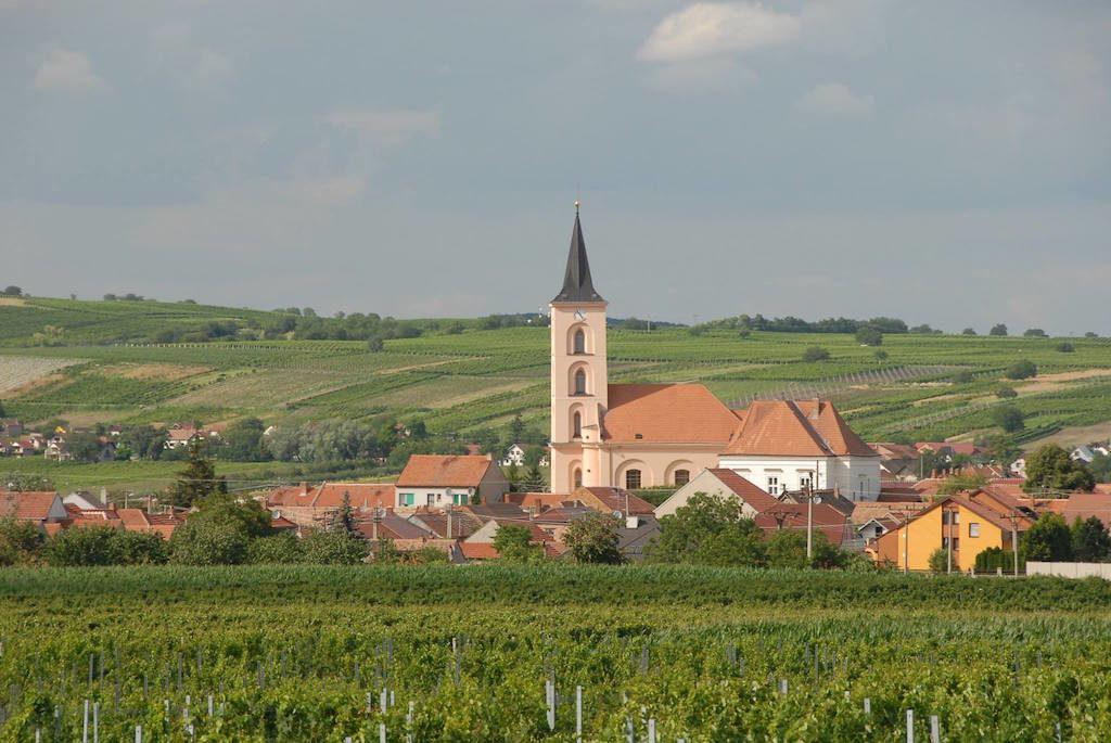 Moravia wine_Vína z Moravy a vína z Čech_facebook