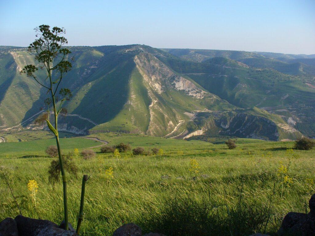 The Golan Landscape