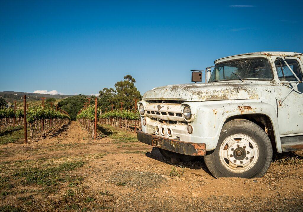 vineyard-1938925_1280_bedrck_pixabay