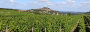 View of French Wine Appellation of Sancerre in Eastern Loire Valley