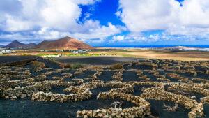 Unique vineyards in black sands in Lanzarote , Canary islands