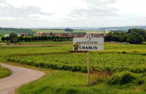 Chablis_Countryside_France_Wine4Food