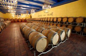 CASTELLO DELLE REGINE CELLAR_wine4food