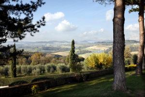 CASTELLO DELLE REGINE_Vineyards_Wine4Food