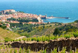 Collioure_Roussillon_France_Wine4Food