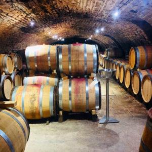Traveling Somm Burgundy_Cellar at Lucien Lemoine