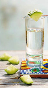 Tequila in Glass with Lime - Wine4Food